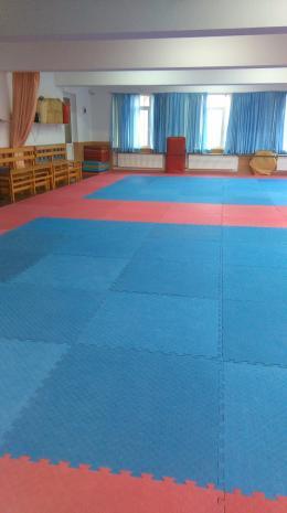 Художествена гимнастика 1